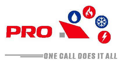 Pro Services LLC Logo